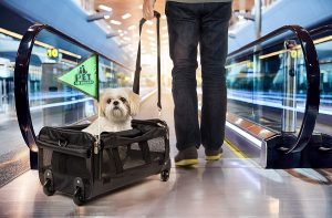 On Wheels Pet Carrier