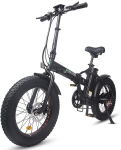 ECOTRIC Electric Foldable Bike Beach Snow Bicycle
