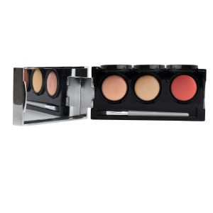 Tattoo Cover Up Makeup, Bruise Concealer, Waterproof, Smudge proof, 3 colors + brush, by Dermaflage,